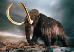 Ancient Mammoth